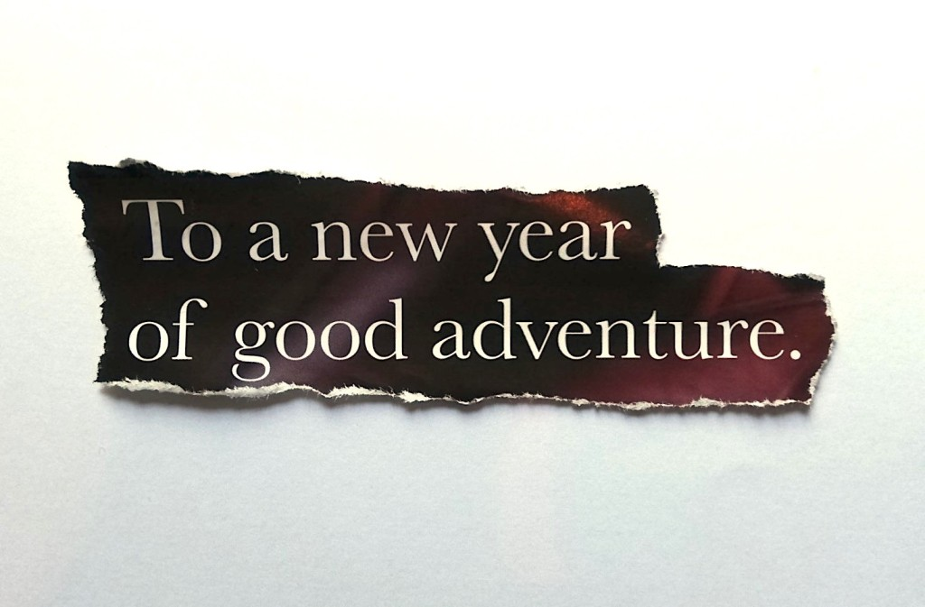 To a new year of good adventure